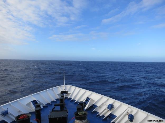 sailing-drake-1