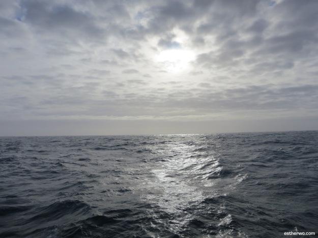 sailing-drake-3