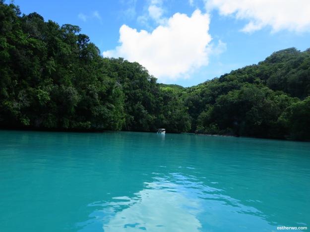 Palau's Milky Way Lagoon