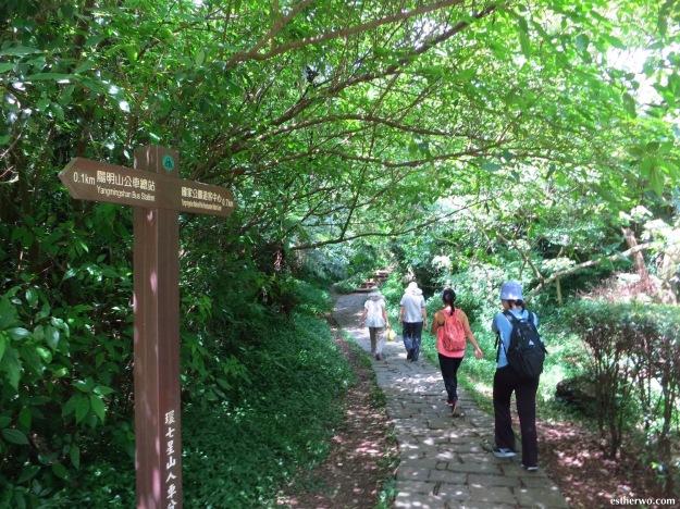 hiking-taiwan-yangmingshan-qixing-04