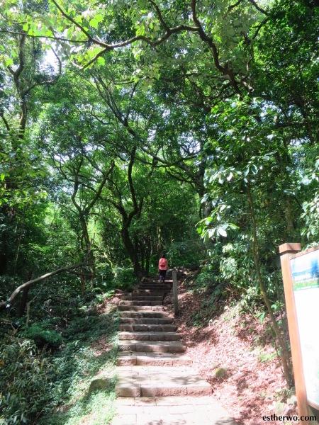 hiking-taiwan-yangmingshan-qixing-08