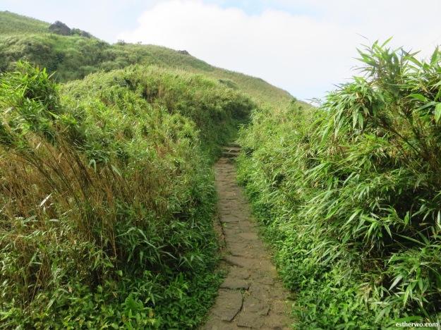 hiking-taiwan-yangmingshan-qixing-11