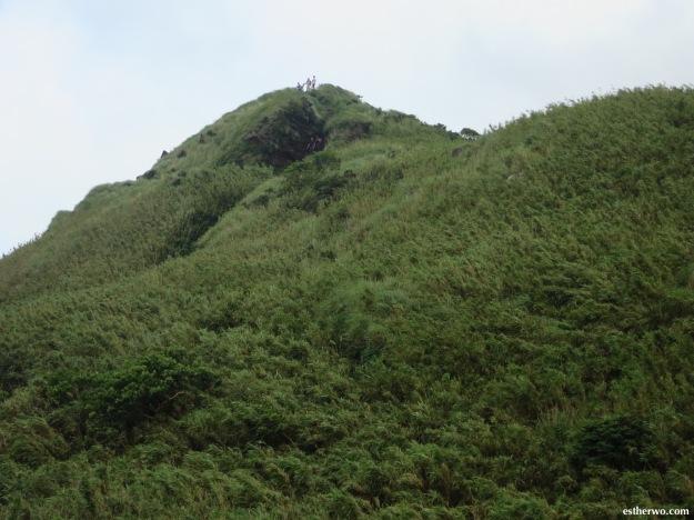 hiking-taiwan-yangmingshan-qixing-12
